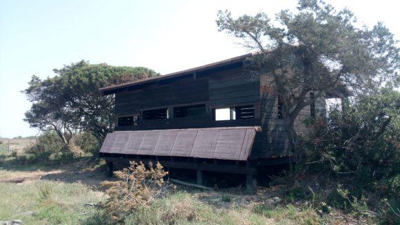 Fondazione Una Onlus, inaugurato il capanno di osservazione Bocca d'Ombrone