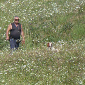 Prove di caccia pratica su selvaggina naturale o liberata per cani da ferma di Federcaccia Como