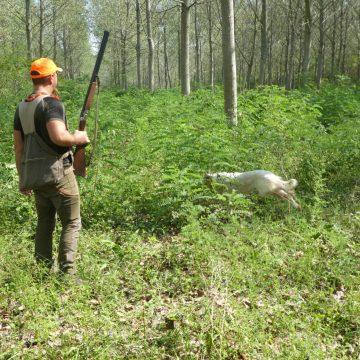 La Cabina di Regia Unitaria Nazionale del Mondo Venatorio scrive al Presidente Fontana per la caccia in Lombardia