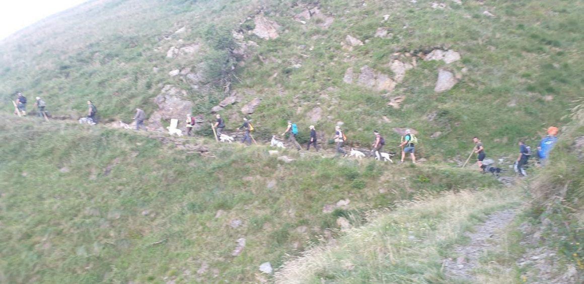 La provincia di Sondrio non ha permesso lo svolgimento delle prove cinofile del 12-13 agosto: la solidarietà di Federcaccia Sondrio agli organizzatori