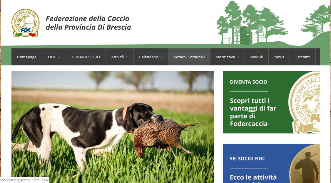 Tutte le notizie di Federcaccia Brescia sul sito ufficiale