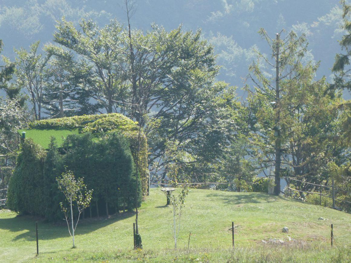 I documenti per la caccia al capanno in provincia di Brescia