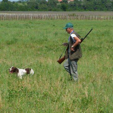 Caccia in provincia di Cremona: le domande di iscrizioni agli ambiti territoriali di caccia