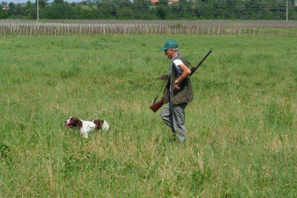 La Cabina di regia del mondo venatorio chiede alle Regioni l' esenzione/riduzione tasse concessioni governative a causa dello stop alla caccia nel 2020
