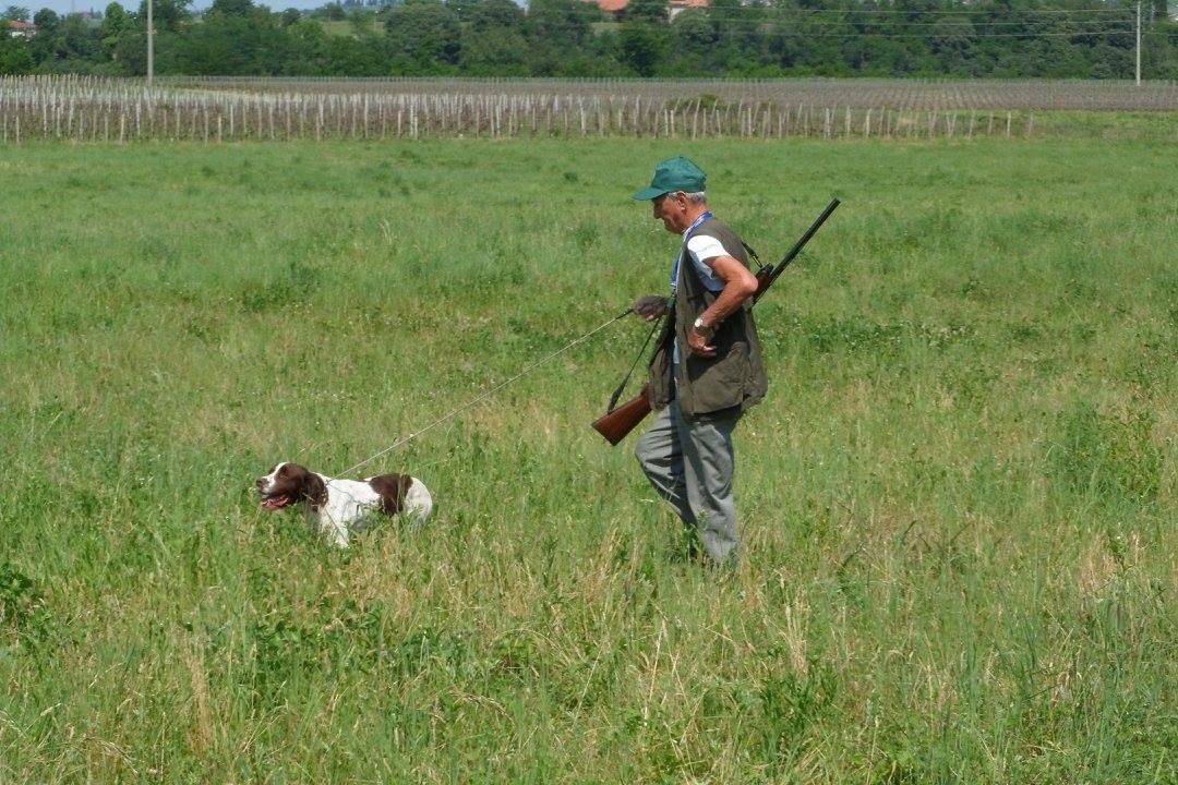 Campionato Provinciale Federcaccia Lecco 2020 per cani da ferma e da cerca