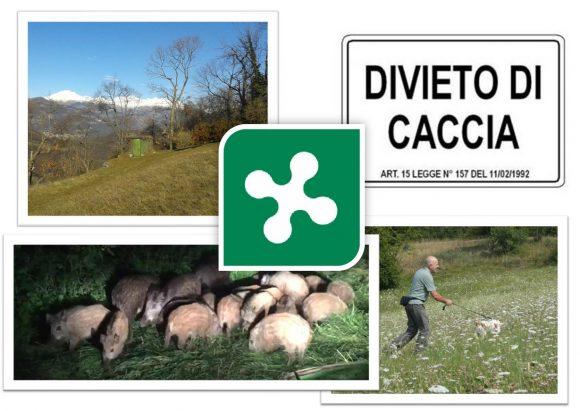 Modifica alla legge sulla caccia: la precisazione di Federcaccia Lombardia sugli emendamenti presentati