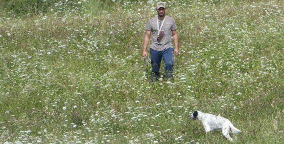 Addestramento e allenamento cani: le misure di sicurezza di Federcaccia Nazionale