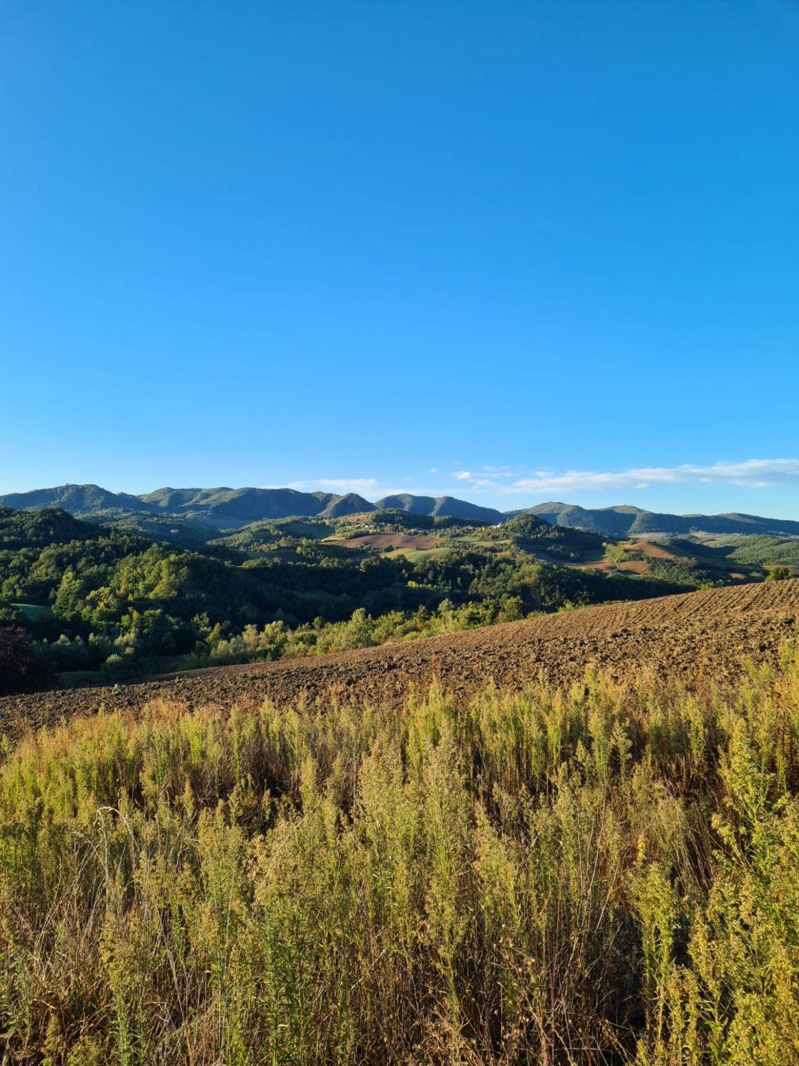 Il calendario integrativo regionale e le disposizioni per Utr Val Padana 2021-2022