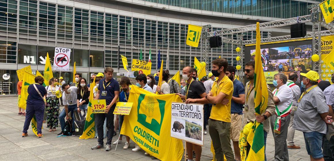 La manifestazione #BastaCinghiali di Coldiretti in tutta Italia: il mondo della caccia a fianco di quello agricolo