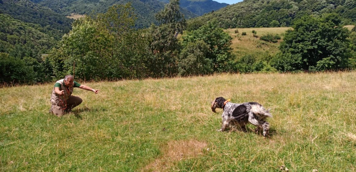 Federcaccia Lombardia sullo stop alla caccia: qualcuno in Regione deve assumersi la responsabilità!
